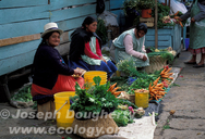 Indigenous women selling vegetables in produce market in Cuenca (Ecuador).