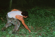 Tico man cutting grass by hand with a machete.