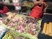 """<strong>Location:</strong> Iquitos, Mercado de Belem (Iquitos, Loreto, Peru)<br /><strong>Author:</strong> <a href=""""http://calphotos.berkeley.edu/cgi/photographer_query?where-name_full=Tobias+Eisenberg&one=T"""">Tobias Eisenberg</a>"""
