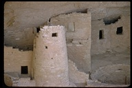 Tower, Cliff Palace, Mesa Verde N.P., Colorado, USA