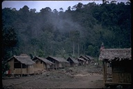 Village in forest and mist seen on railroad trip from Quito to Guaxaquil, Ecuador, 1971