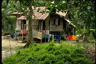Malaysian house in rubber plantation, Cameron Highlands, Malaysia, 1976
