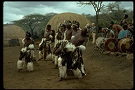 Male Zulu dancers, Africa